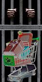 Статья Шопмастера о защите административного раздела Интернет-магазинов